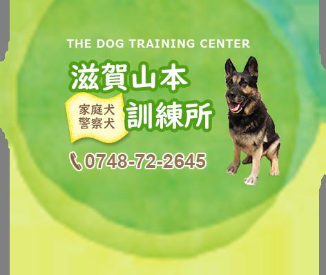 犬の訓練所 ドッグスクール 滋賀